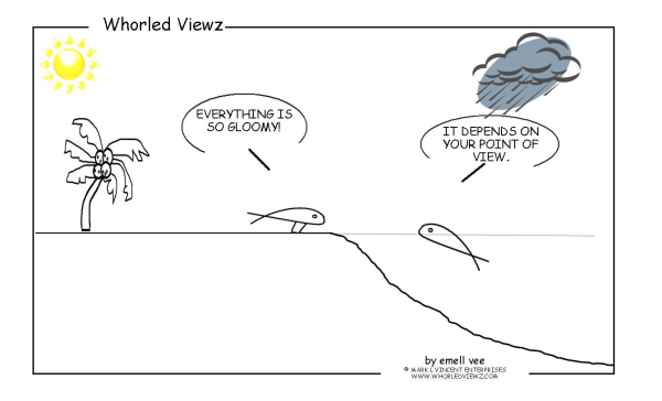 point of view, emell vee, whorled viewz