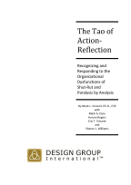 the_tao_of_action_reflection_cover1-resized-144.jpg