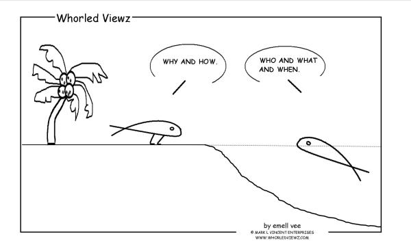 whorled viewz, steward leader