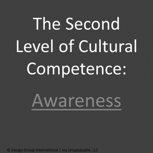 The_Second_Level_of_Cultural_Competence