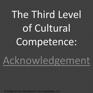 The_Third_Level_of_Cultural_Competence