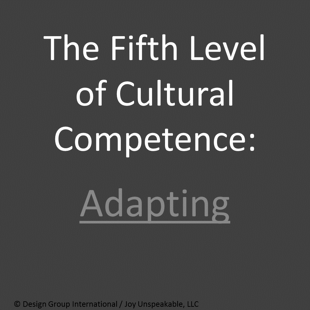 The_Fifth_Level_of_Cultural_Competence