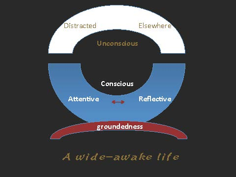 wide_awake_life
