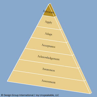 Pyramid-brown-blue-7-Advocacy