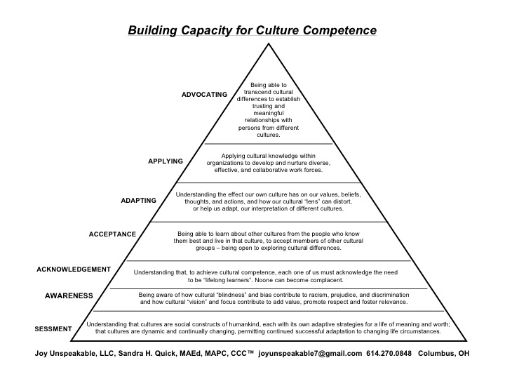 building_capacity_for_culture_competence