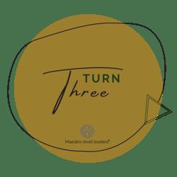 Turn 3