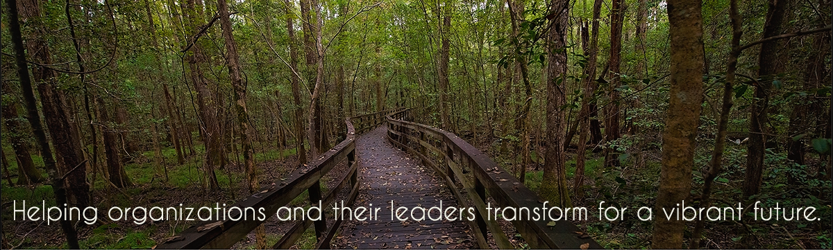 Helping organizations and their leaders transform for a vibrant future.