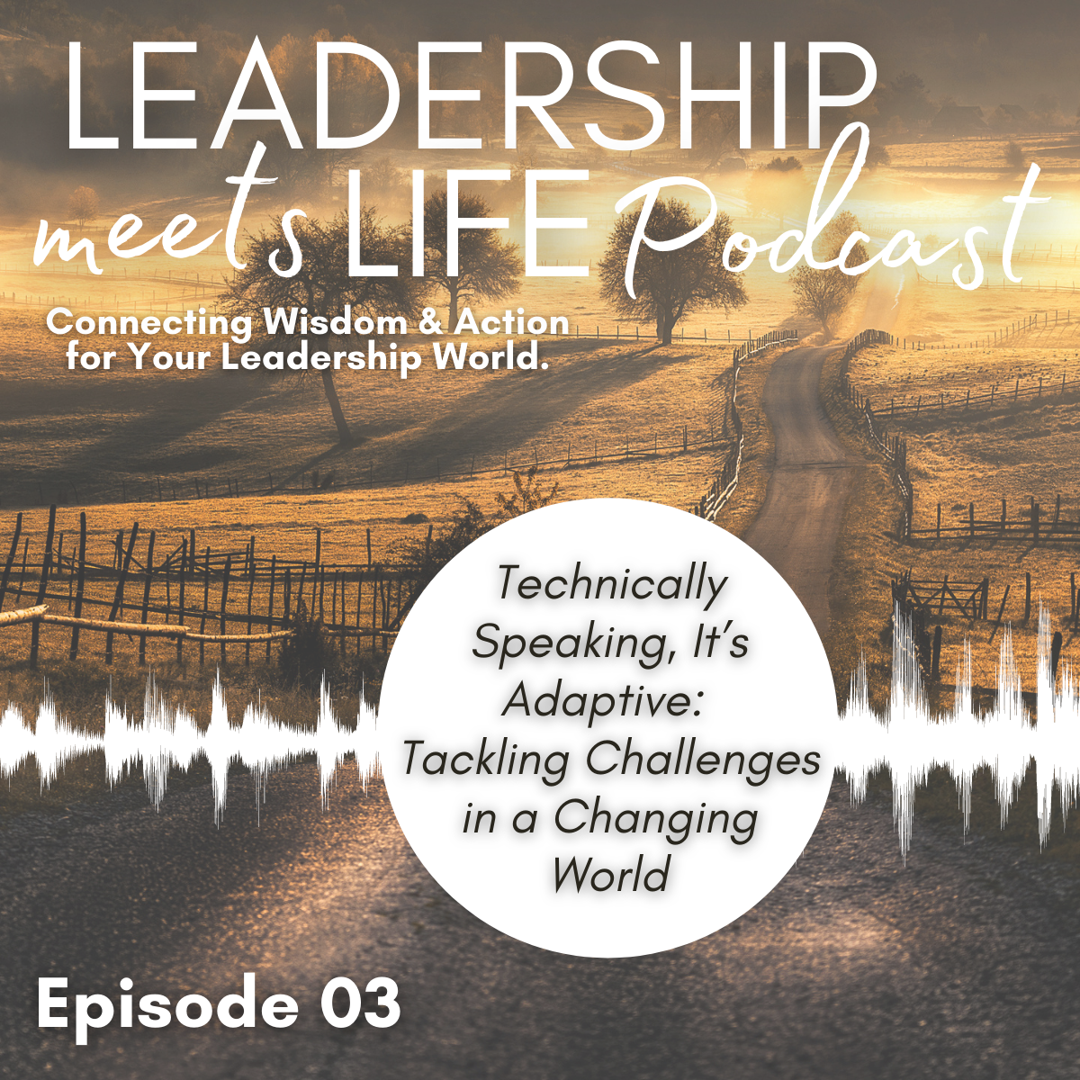 Leadership Meets Life Podcast - Episode 3