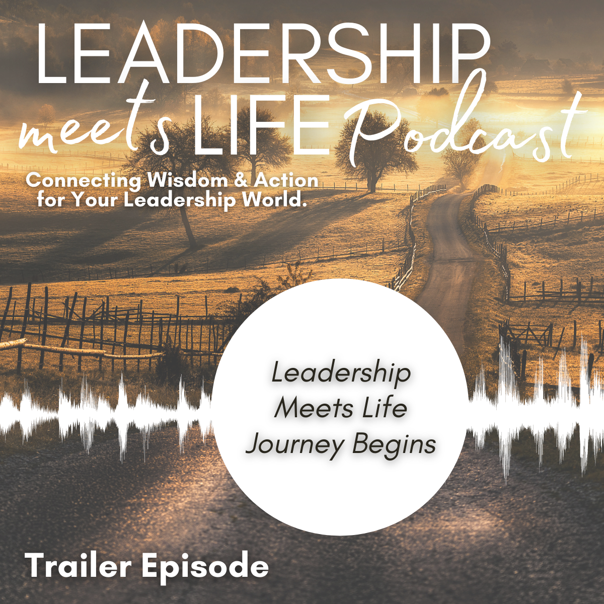 Leadership Meets Life Podcast - Episode