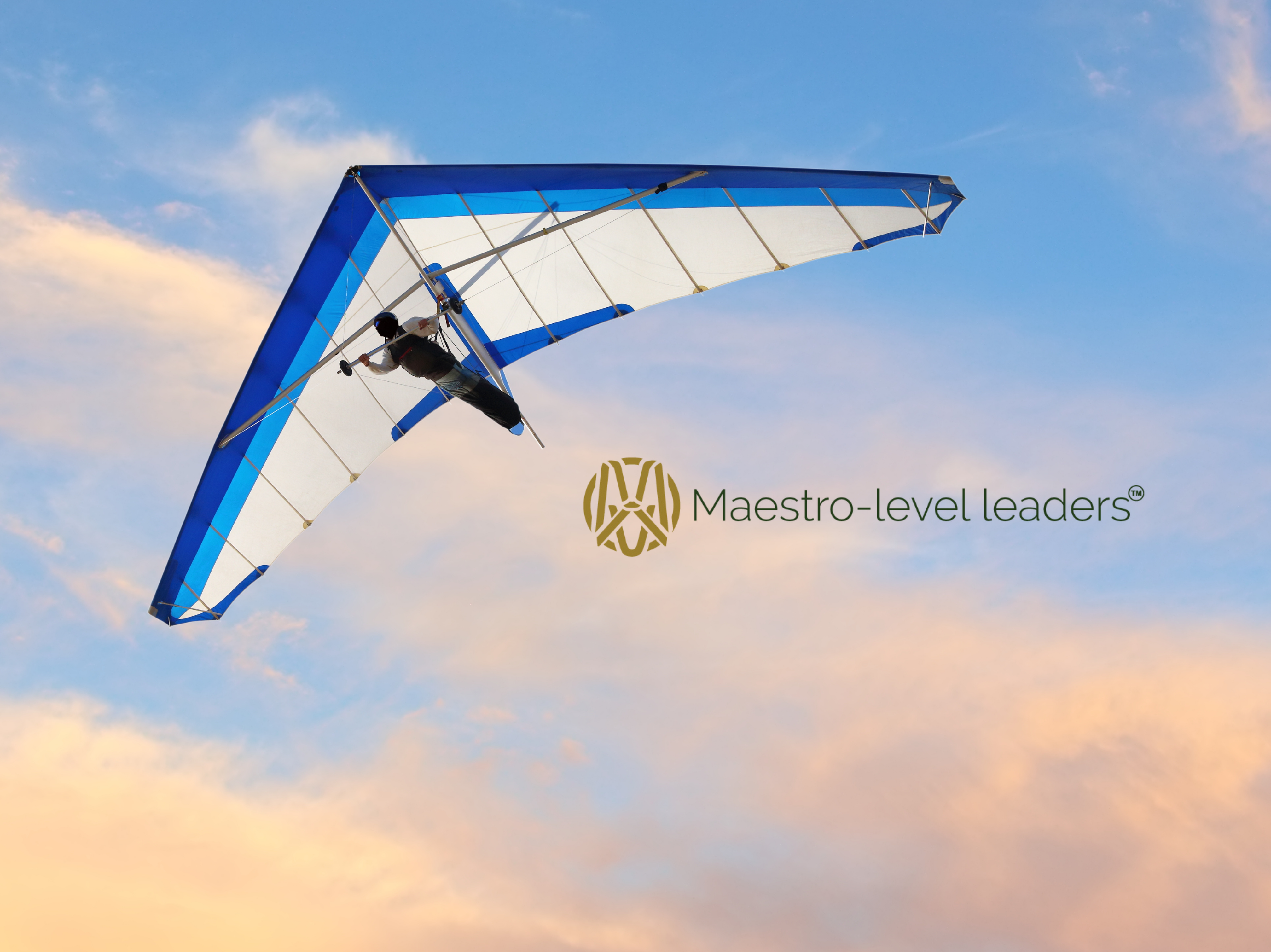 Maestro-level leaders_About Us Image