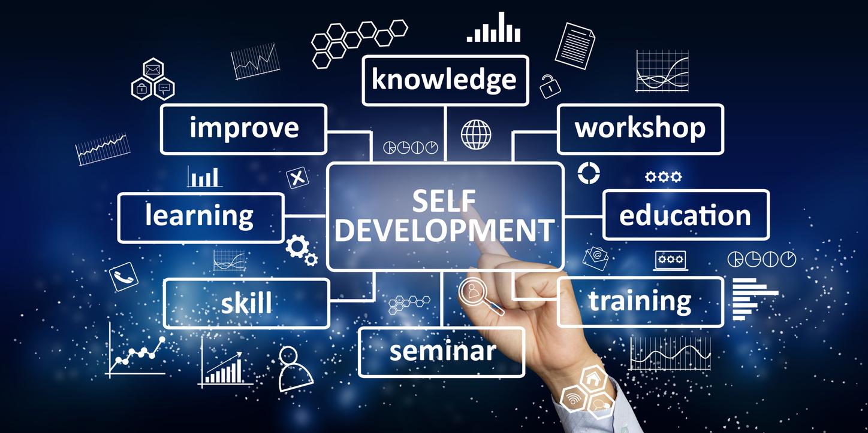 executive leader development scaffolding